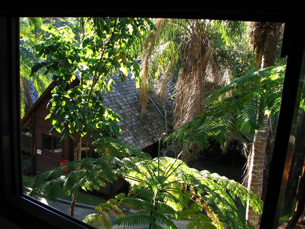 Pensjonat w amazońskiej puszczy.