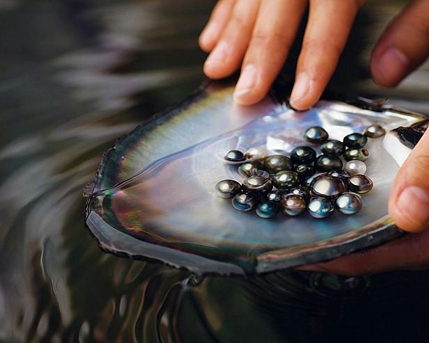 Czarne perły z Bora Bora