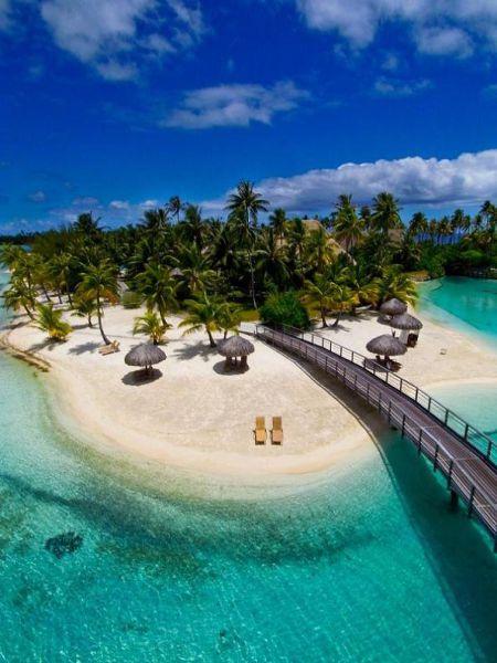 Dżungla Bora Bora